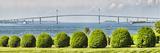 Plants in a Park, Fort Adams State Park, Newport Harbor, Claiborne Pell Bridge, Newport Photographic Print