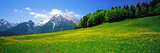 Springtime Bavarian Alps Germany Photographic Print