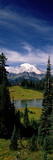Mt Rainier Wa Photographic Print