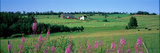 Summer Fields and Farm Prince Edward Island Canada Photographic Print