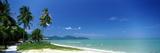Tropical Beach Penang Malaysia Fotografiskt tryck