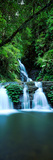 Waterfall in a Forest, Elabana Falls, Lamington National Park, Queensland, Australia Photographic Print