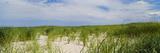 Sand Dunes at Crane Beach, Ipswich, Essex County, Massachusetts, USA Photographic Print