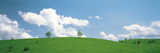 Grassland with Blue Sky and Clouds Photographic Print