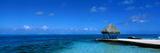 Beach Scene Bora Bora Island Polynesia Photographic Print
