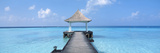 Beach and Pier the Maldives Photographic Print