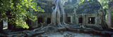 Wat Temple Complex of Ta-Prohm Cambodia Photographic Print