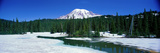 Mount Rainier National Park Wa Photographic Print