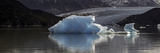 Iceberg in a Lake, Gray Glacier, Torres Del Paine National Park, Magallanes Region, Patagonia Photographic Print