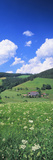 Farmhouse in a Field, Glottertal, Black Forest, Baden-Wurttemberg, Germany Photographic Print