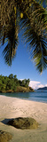 Palm Trees and Rocks on a Small Secluded Beach on North Island, Seychelles Photographic Print