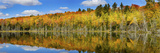 Reflection of Trees in a Lake, Pete's Lake, Schoolcraft County, Upper Peninsula, Michigan, USA Photographic Print