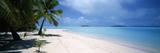Palm Trees on the Beach, Tapuaetai, Aitutaki, Cook Islands Fotodruck