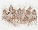 Preakness Collectable Print by Guillaume Azoulay