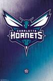 Charlotte Hornets - Logo 14 Prints
