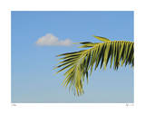 Palm Cloud Islamorada Giclee Print by John Gynell