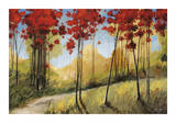 Forest Trail Giclee Print by Thomas Andrew