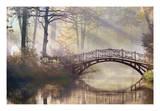 Morning Light Premium Giclee Print by James Gordon