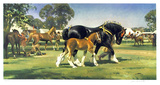 Horse Show Limited Edition by Frank Wootton