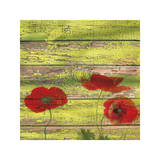 Red Poppies 2 Premium Giclee Print by Irena Orlov