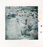 Sheep Portfolio 3 Limited Edition by Menashe Kadishman