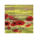 Red Poppies 1 Premium Giclee Print by Irena Orlov