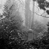 Highgate Cemetery, Hampstead, London Photographic Print by John Gay