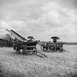 Freethorpe, Norfolk, Two Traditional Horse-Drawn Farm Wagons Photographic Print by Hallam Ashley
