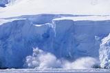 Glacier Calving Iceberg into Paradise Bay in Antarctica Photographic Print