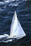 Australia 11 Sailing in America's Cup Fotografie-Druck