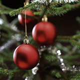 Close-Up of Red Hanging Christmas Baubles on Blurred Tree Photographic Print