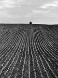 A Newly Ploughed Field Near Aylesbury, Buckinghamshire Photographic Print by John Gay