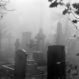 Highgate Cemetery, Hampstead, London, Gravestones and Tombs Standing in the Mist Photographic Print by John Gay