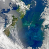 Phytoplankton Bloom in the Pacific Ocean East of New Zealand Photographic Print
