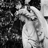 Highgate Cemetery, West Cemetery, London, the Statue of an Angel in Thought Photographic Print by John Gay