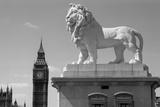 Coade Lion, Westminster Bridge Road, Lambeth, London Photographic Print by Eric De Mere