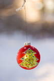 Close-Up of Golden Christmas Tree on Red Bauble Against Blurred Background Photographic Print by Bjorn Andren