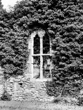 Netley Abbey, Netley, Hampshire Photographic Print by Henry Taunt