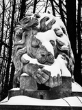 Highgate Cemetery, London, a Snow Covered, Marble Statue of a Sleeping Lion Photographic Print by John Gay