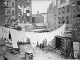 Clothesline and Tenements Photographic Print