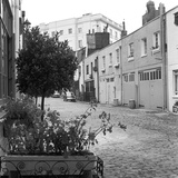 Groom Place, Belgravia, London, View of Groom Place Photographic Print by John Gay