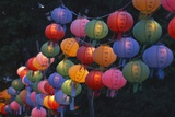 Paper Lanterns at Jangchung Park Photographic Print