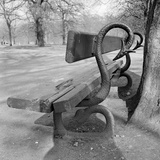 Kensington Gardens, Westminster, London, Detail of a Bench in Kensington Gardens Photographic Print by Eric De Mere