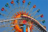 Ferris Wheel and Roller Coaster at Expo 1970 Photographic Print