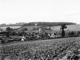 Amersham, Buckinghamshire Photographic Print by Henry Taunt