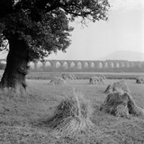 Congleton Viaduct, Cheshire, General View of the Congleton Viaduct across Agricultural Land Photographic Print by Eric De Mere