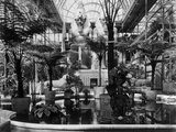 Crystal Palace, Sydenham, London Photographic Print by Philip Henry Delamotte
