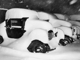 Cars Buried by Heavy Snowfall Photographic Print