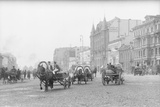 Horse Carts on Nevsky Prospect Photographic Print