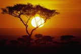 Sunrise on Masai Mara National Reserve Photographic Print